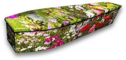 Colourful Coffins